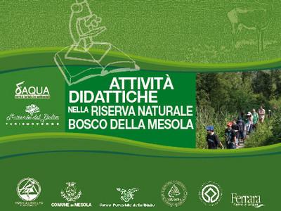 Attività didattiche nel Bosco della Mesola